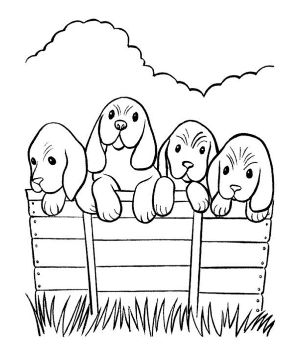 Картинки олененок для детей