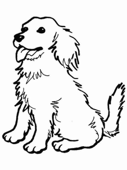 новогодние раскраски с символом 2018 года - Собакой 1