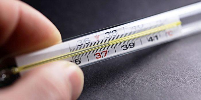 базальная температура для определения беременности