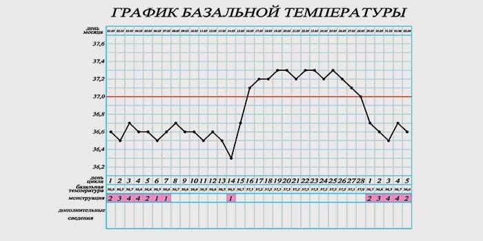 фото графика базальной температуры 1