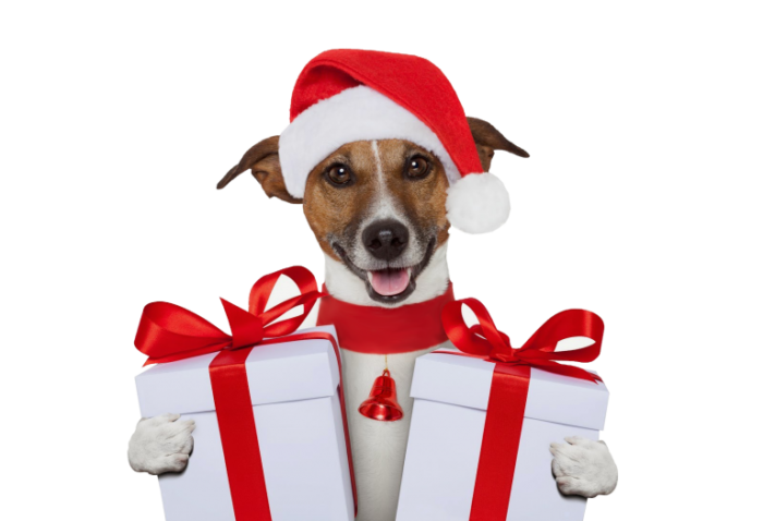 новогодние картинки с символом Собаки 2018, галерея на фото 5